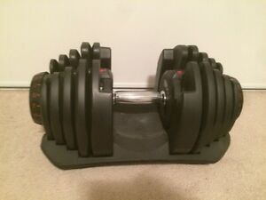 Bowflex 1090 Adjustable Dumbbells Kitchener / Waterloo Kitchener Area image 2