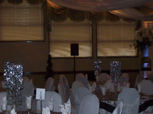 professional dj service for any event Cambridge Kitchener Area image 6