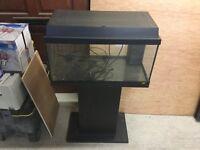 Jewel 60L fish tank
