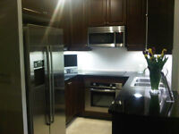 Downtown Toronto 2 BR & 2 full bath luxury condo (Yonge&Bloor)