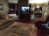 TV, couch, table, stands and more