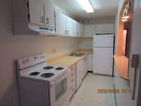 Clean & Upgraded One Large Bed Room - NON Smoking Bldg.
