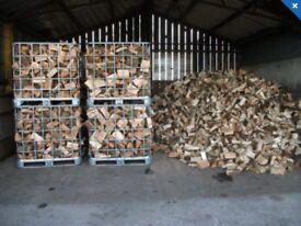 Firewood logs seasoned dry