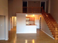 2 bedroom loft apartment- Uptown King St available NOW