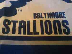 Baltimore Stallions Flag CFLers Canadian Football League CFL USA London Ontario image 2