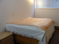Beautiful and clean studio, furnished. Lasalle.