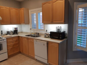 Kitchen Cabinets with Countertops and Pantry