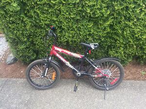 Young Boy's Starter bike