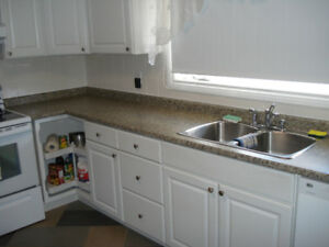 Kitchen Counter Top with Double Sink