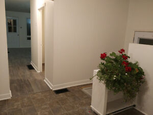 Newly renovated 2 bedroom house for rent November 1st in Aylmer