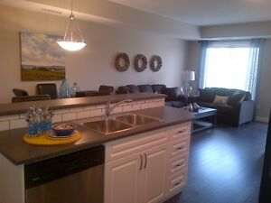 Fully furnished one bedroom condo for rent in Gibbons Strathcona County Edmonton Area image 2