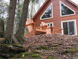 Lakefront Log Cabin Cottage Rental