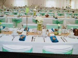 Wedding decor -Teal/Aqua & Apple green