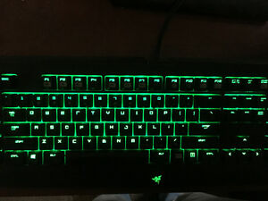 RAZER Blackwidow keyboard and Naga MMO mouse. $160 OBO.