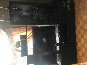 Black Tv entertainment unit