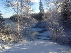 Terrain de villégiature Chute à la Savane Lac-Saint-Jean Saguenay-Lac-Saint-Jean image 9
