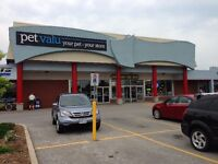 5500 sqft available in well anchored plaza