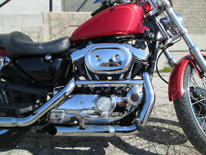 1997 Sportster custom 1200 *lots of chrome London Ontario image 3
