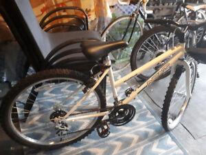 New bike for girl