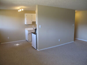 2 bedroom spacefull apartment for rent downtown Lacombe