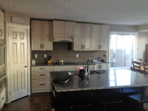 Custom Cabinets/Wall Units/Fireplace Mantles/Complete Renovation