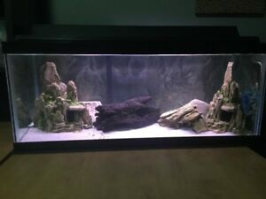30 GALLON FISH TANK, LIKE NEW WITH LIGHT AND 50 GALLON FILTER