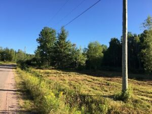 Plumweseep Rd., Studholm