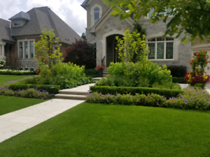 Cheap same day landscaping work yard clean up we do it all!