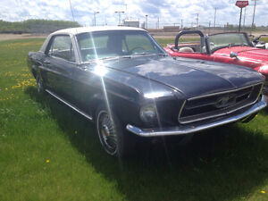 Nice 1967 Mustang, very original classic with O/H 6 cyl 3 sp aut