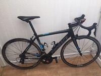 Prorace Rapide Custom Bike