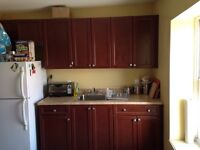 Large 2 Bedroom Downtown