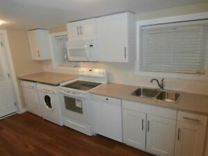Spacious and bright 1 BR apartment steps from downtown
