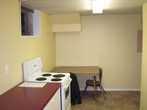 UofA 2 Bdrm Bsmt Suite – Bright & Sunny – Steps to Campus & LRT!