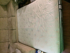 Queen Size Sealy Mattress