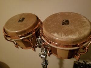 Toca bongos