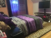 Pointe-Claire Room in House for rent