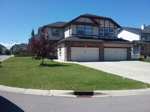 Beautiful home in Silverado south west for rent