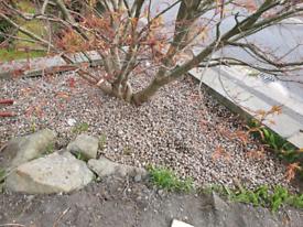 Free decorative gravel pebbles