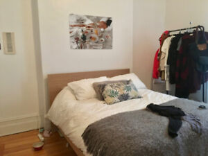 Beautiful 1 Bedroom Apartment in the Centre of Downtown Montreal