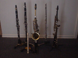 In-home Clarinet, Saxophone,  Flute and Piano Lessons.