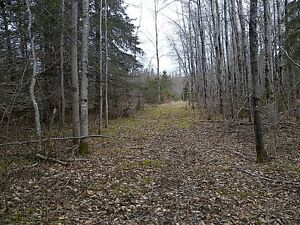 Acreage for sale in Marrtown, just outside Sussex, NB
