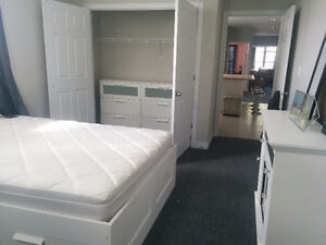 TRENT STUDENTS, ROOM AVAILABLE