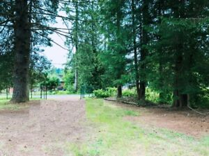 Nice house with Acres land in Mission