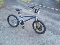 New Kids Bike (BMX Style) Equator Evader
