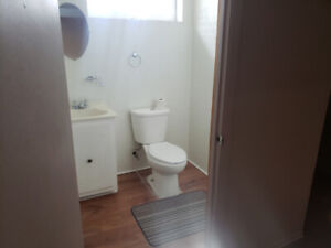 Extra Large 1 Bed Basement Apt March 1