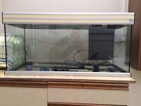 Large Aquatlantis Aquarium / Fish Tank