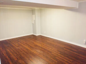 Newly renovated basement suite.
