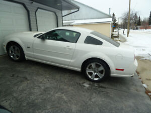 2006 Mustang GT Supercharged only 13.500 klm