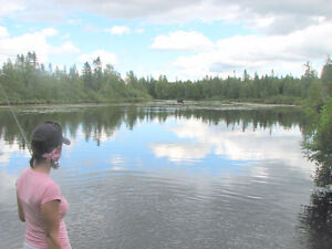 Terrain avec rivière lac pour chalets