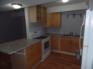 1 bedroom apt for rent- in the country!
